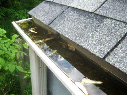 TruGuard prevents clogged gutters and fascia rot